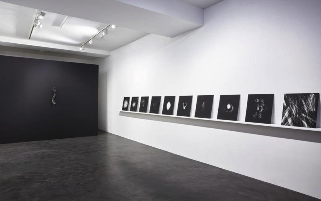 Lucía Pizzani refleja la escasez en blanco y negro