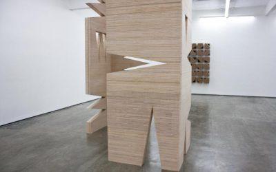 Exposición de Antonorsi: Un ángulo que realmente es un sueño, por Maria Laura Lombardi